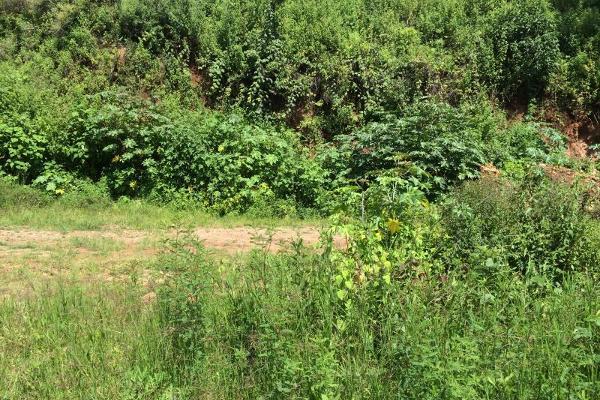 Foto de terreno habitacional en venta en  , san gaspar, valle de bravo, méxico, 6199084 No. 07