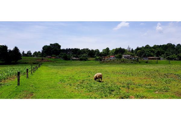 Foto de terreno habitacional en venta en  , valle de bravo, valle de bravo, méxico, 7480367 No. 01