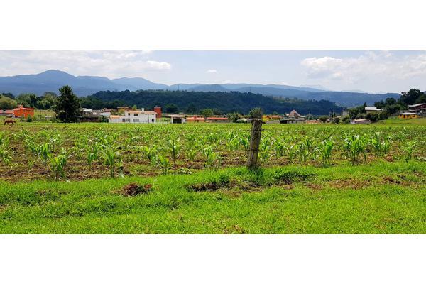 Foto de terreno habitacional en venta en  , valle de bravo, valle de bravo, méxico, 7480367 No. 02