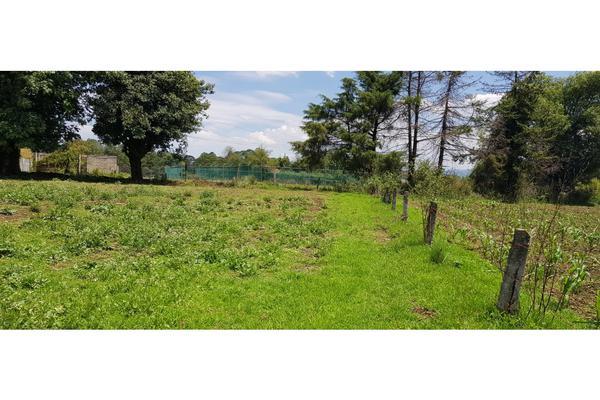 Foto de terreno habitacional en venta en  , valle de bravo, valle de bravo, méxico, 7480367 No. 04
