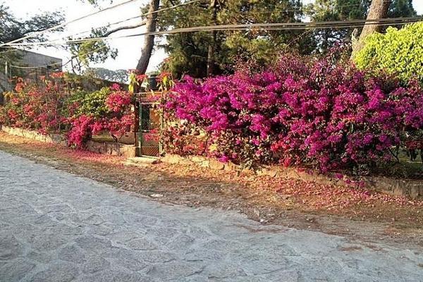 Foto de terreno habitacional en venta en  , valle de bravo, valle de bravo, méxico, 7913375 No. 03
