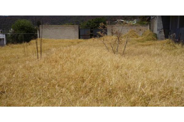 Foto de terreno habitacional en venta en  , valle de bravo, valle de bravo, méxico, 9107502 No. 02