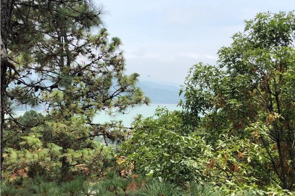Foto de casa en venta en  , valle de bravo, valle de bravo, méxico, 9304324 No. 02
