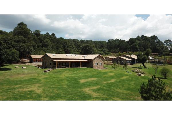 Foto de casa en venta en  , valle de bravo, valle de bravo, méxico, 9304600 No. 22