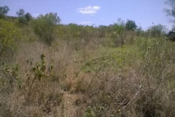Foto de terreno habitacional en venta en  , valle de hidalgo, montemorelos, nuevo león, 4671028 No. 05