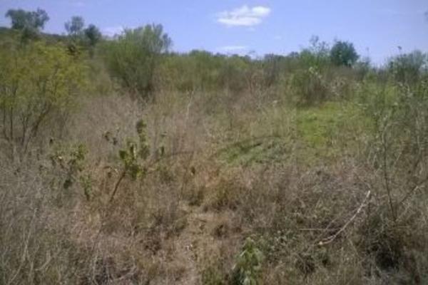 Foto de terreno habitacional en venta en  , valle de hidalgo, montemorelos, nuevo león, 4671028 No. 08