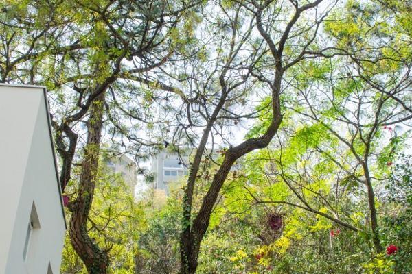 Foto de casa en venta en  , valle de san ángel sect español, san pedro garza garcía, nuevo león, 14023777 No. 26