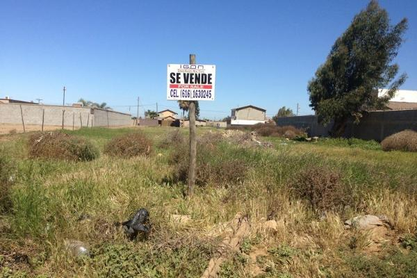 Foto de terreno habitacional en venta en  , valle de san quintín, ensenada, baja california, 14037347 No. 01