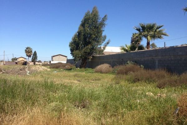 Foto de terreno habitacional en venta en  , valle de san quintín, ensenada, baja california, 14037347 No. 02