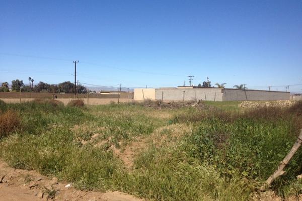 Foto de terreno habitacional en venta en  , valle de san quintín, ensenada, baja california, 14037347 No. 03