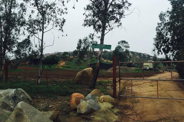 Foto de terreno habitacional en venta en valle redondo , valle redondo, tijuana, baja california, 3729584 No. 04