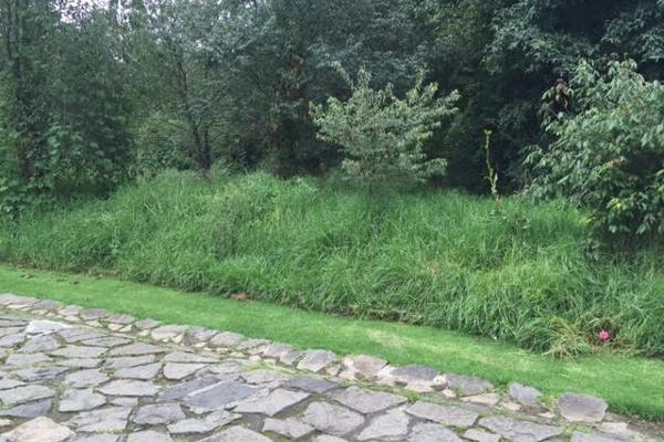 Foto de terreno habitacional en venta en valle santana , cuadrilla de dolores, valle de bravo, méxico, 5723483 No. 08