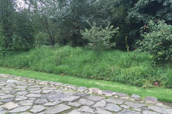 Foto de terreno habitacional en venta en valle santana , cuadrilla de dolores, valle de bravo, méxico, 5723631 No. 07
