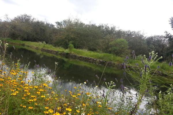 Foto de terreno habitacional en venta en valle santana , rincón villa del valle, valle de bravo, méxico, 5723483 No. 05
