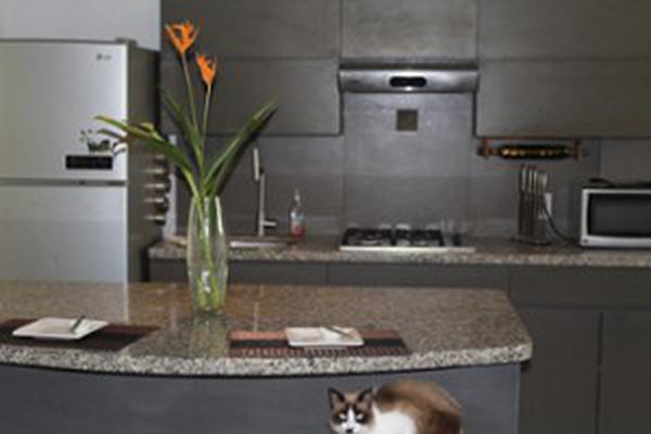 Foto de casa en condominio en venta en venezuela 374, 5 de diciembre, puerto vallarta, jalisco, 16754899 No. 02