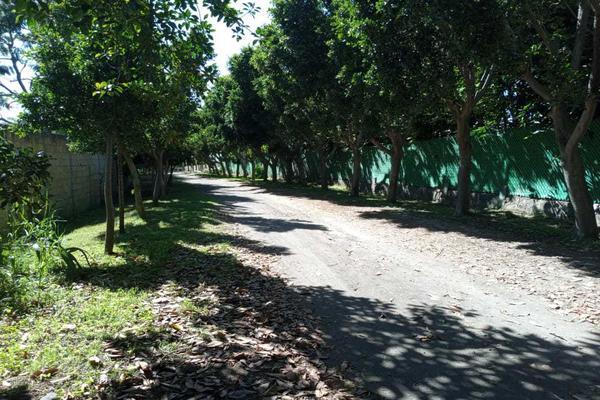 Foto de casa en venta en venta casa de campo zona atlixco tenextepec atlixco , tenextepec, atlixco, puebla, 17785770 No. 04