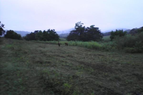 Foto de terreno habitacional en venta en venta de rancho en ciudad valles, san luis potosi , 21, ciudad valles, san luis potosí, 14742566 No. 10