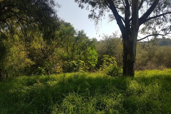 Foto de terreno habitacional en venta en venta terreno ideal para desarrolladores 19, 700 m2 zona valsequillo y periferico , barrio san juan (san francisco totimehuacan), puebla, puebla, 6169610 No. 04
