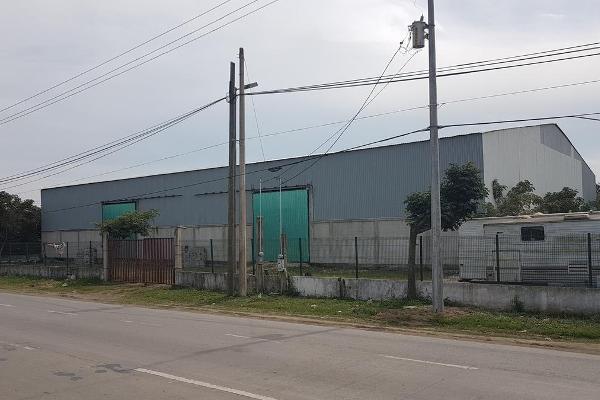 Foto de nave industrial en renta en  , venustiano carranza, altamira, tamaulipas, 12837831 No. 05