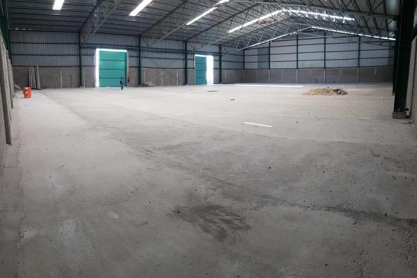 Foto de nave industrial en renta en  , venustiano carranza, altamira, tamaulipas, 12837831 No. 06