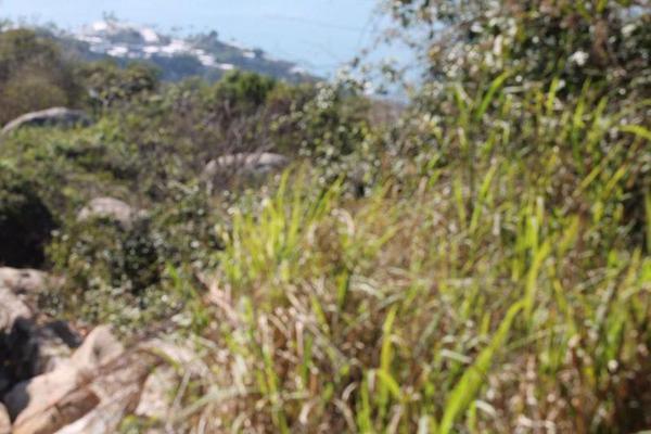 Foto de terreno habitacional en venta en  , veracruz, veracruz, veracruz de ignacio de la llave, 7991020 No. 06