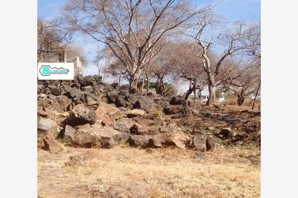 Foto de terreno industrial en venta en  , vergeles de oaxtepec, yautepec, morelos, 20322793 No. 06