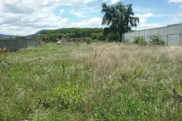 Foto de terreno habitacional en venta en vicente guerrero 9, san diego acapulco, atlixco, puebla, 5906815 No. 03