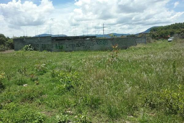 Foto de terreno habitacional en venta en vicente guerrero 9, san diego acapulco, atlixco, puebla, 5906815 No. 05