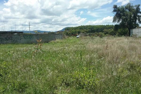 Foto de terreno habitacional en venta en vicente guerrero 9, san diego acapulco, atlixco, puebla, 5906815 No. 06