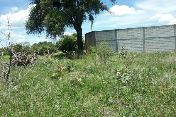 Foto de terreno habitacional en venta en vicente guerrero 9, san diego acapulco, atlixco, puebla, 5906815 No. 08