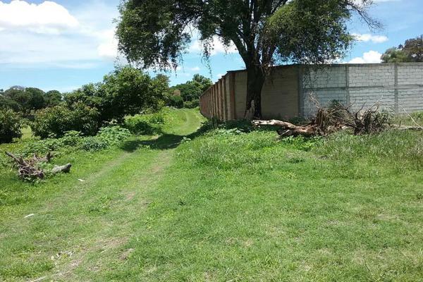 Foto de terreno habitacional en venta en vicente guerrero 9, san diego acapulco, atlixco, puebla, 5906815 No. 10