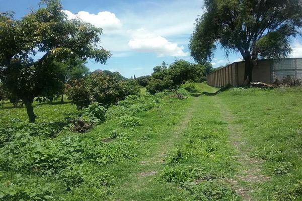 Foto de terreno habitacional en venta en vicente guerrero 9, san diego acapulco, atlixco, puebla, 5906815 No. 11