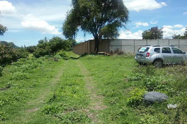 Foto de terreno habitacional en venta en vicente guerrero 9, san diego acapulco, atlixco, puebla, 5906815 No. 12