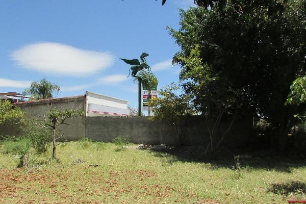 Foto de terreno habitacional en venta en vicente guerrero poniente , jocotepec centro, jocotepec, jalisco, 3042541 No. 04