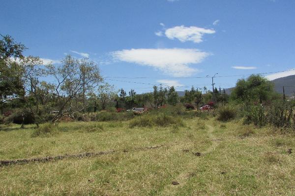 Foto de terreno habitacional en venta en vicente guerrero poniente , jocotepec centro, jocotepec, jalisco, 3042541 No. 13