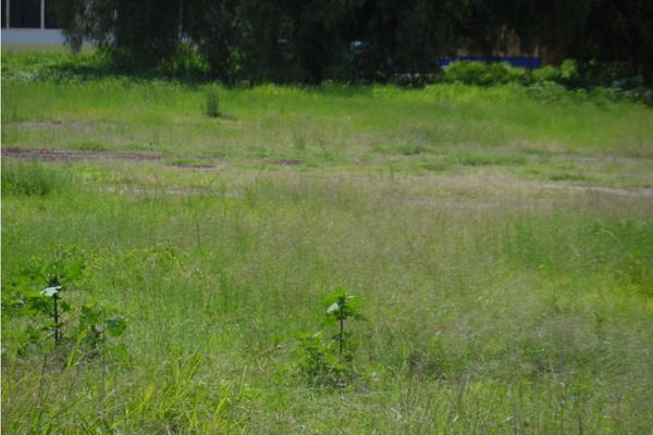 Foto de terreno habitacional en venta en  , vicente riva palacio, texcoco, méxico, 7536075 No. 01