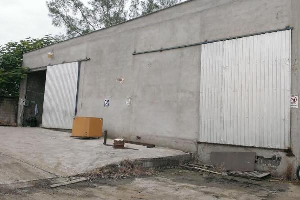 Foto de nave industrial en renta en  , villa cuauhtémoc, altamira, tamaulipas, 941739 No. 04