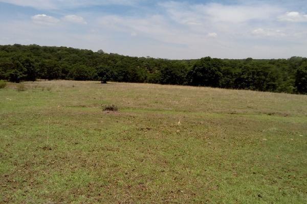 Foto de terreno habitacional en venta en  , villa del carbón, villa del carbón, méxico, 3424335 No. 01