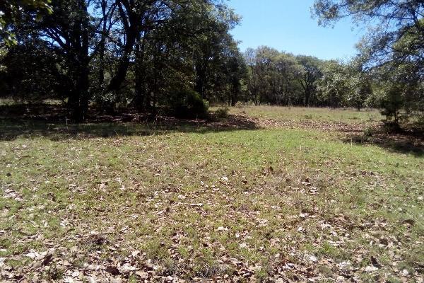 Foto de terreno habitacional en venta en  , villa del carbón, villa del carbón, méxico, 3424335 No. 02