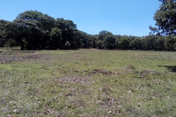 Foto de terreno habitacional en venta en  , villa del carbón, villa del carbón, méxico, 3424335 No. 03