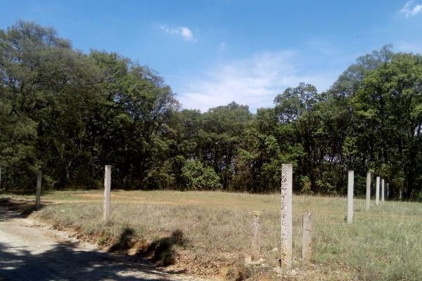 Foto de terreno habitacional en venta en  , villa del carbón, villa del carbón, méxico, 3424335 No. 05