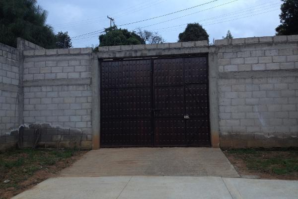 Foto de terreno comercial en venta en  , villa guerrero, villa guerrero, méxico, 2624965 No. 01