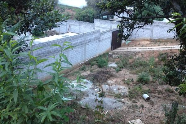 Foto de terreno comercial en venta en  , villa guerrero, villa guerrero, méxico, 2624965 No. 04