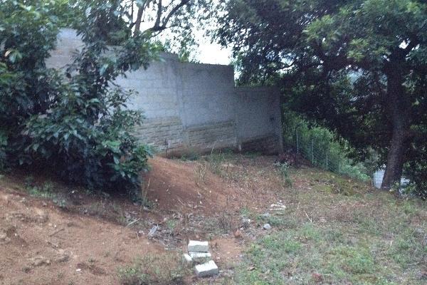 Foto de terreno comercial en venta en  , villa guerrero, villa guerrero, méxico, 2624965 No. 05