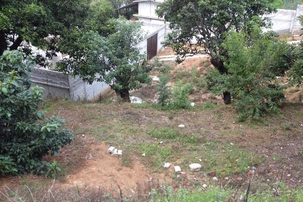 Foto de terreno comercial en venta en  , villa guerrero, villa guerrero, méxico, 2624965 No. 06