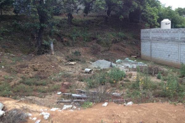 Foto de terreno comercial en venta en  , villa guerrero, villa guerrero, méxico, 2624965 No. 07