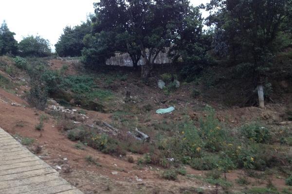 Foto de terreno comercial en venta en  , villa guerrero, villa guerrero, méxico, 2624965 No. 08