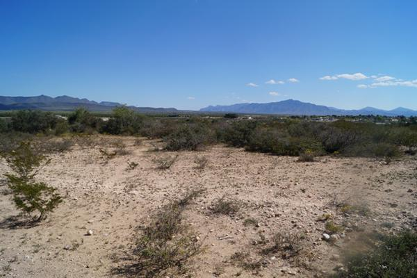 Foto de terreno habitacional en venta en villa rica , san juan de la vaquería, saltillo, coahuila de zaragoza, 3464604 No. 04