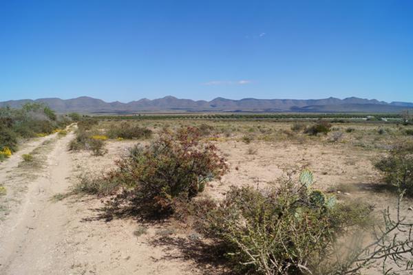 Foto de terreno habitacional en venta en villa rica , san juan de la vaquería, saltillo, coahuila de zaragoza, 3464604 No. 05