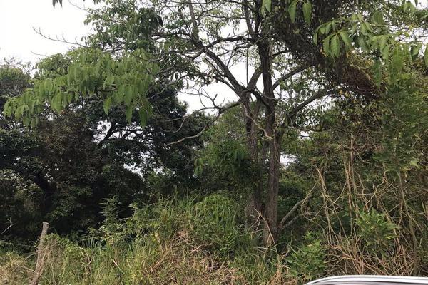 Foto de terreno habitacional en venta en  , villas de altamira, altamira, tamaulipas, 11699967 No. 04